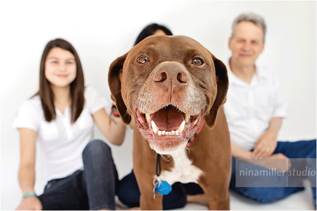 family-with-dog-2