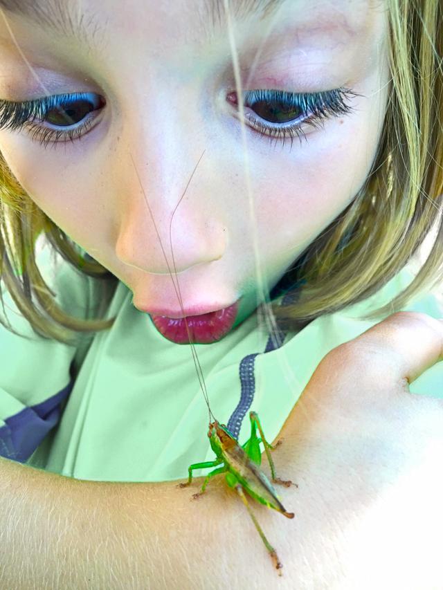 grasshopper IntenseBLOG